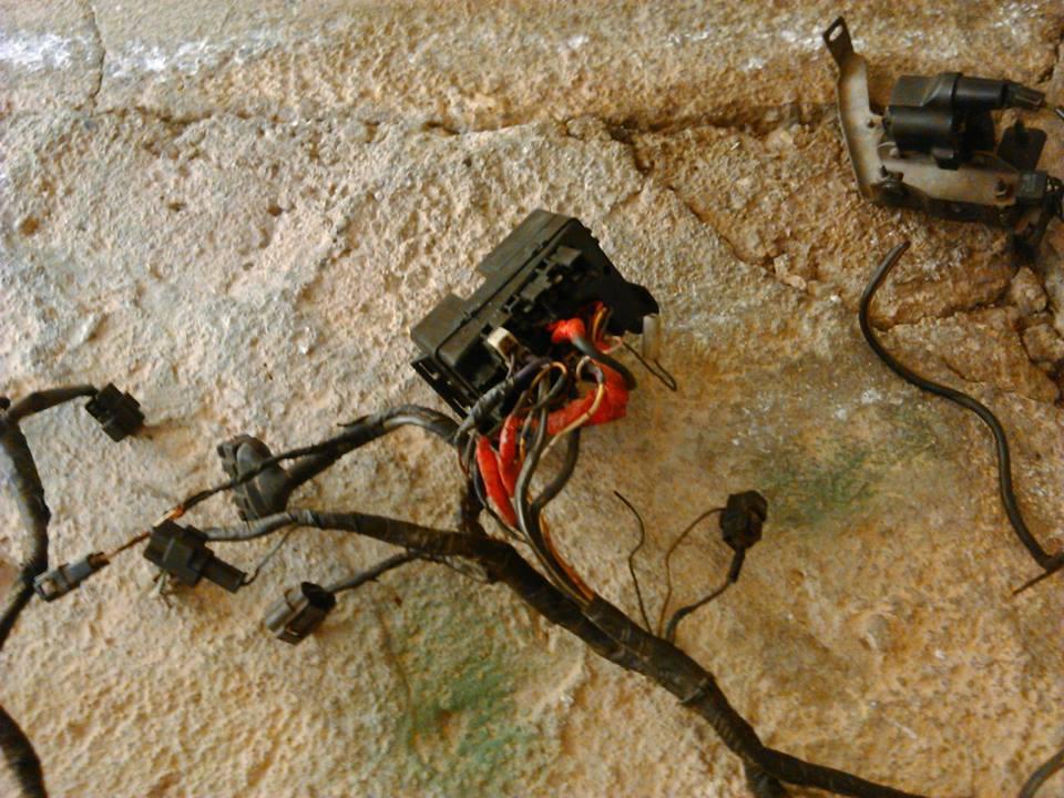 gtx bpt engine wiring diagram harness ecu pinouts